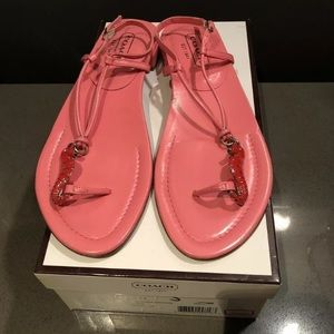 Coach 2005 Seahorse Sandals Ankle Strap Thong Flat